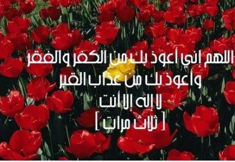 تاة محترمة من عائلة محافظة جد خجولة