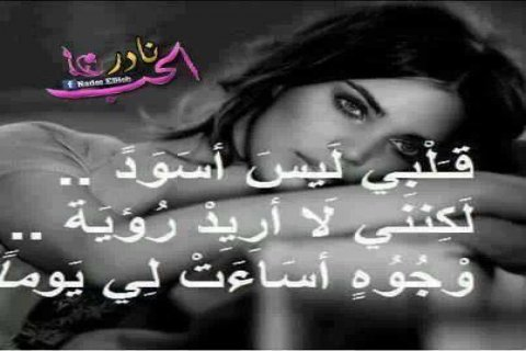 ابحث عن شخص مميز ما ابغي كلام فاضي رجاء المصريين لا يتواصلون معي