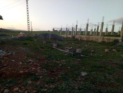 قرية سعيد عبيد البويرة