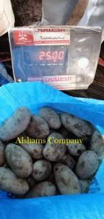 صور Fresh potato 2
