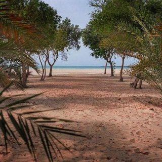 اراضي للبيع بمشروع الجرف بمنطقة غنتوت علي اجمل سواحل الأمارات علي البحر مباشرة