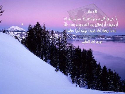 انا جزائرية الجنسية مقيمة في لبنان ماجستير مكتبات ومعلومات